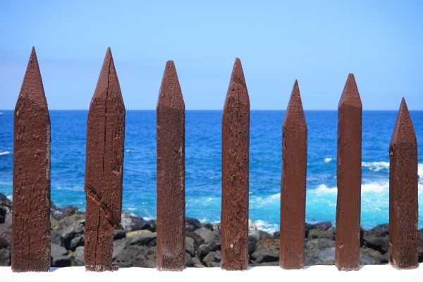 fence-wood-fence-limit-demarcation-wood-pole-fence-2 (1)